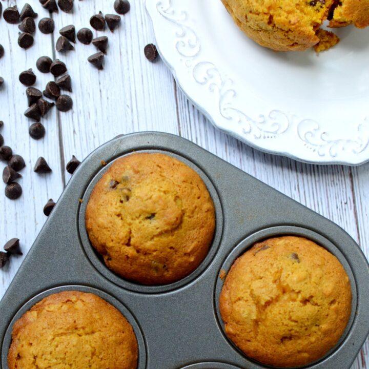 gluten free pumpkin muffins with chocolate chips