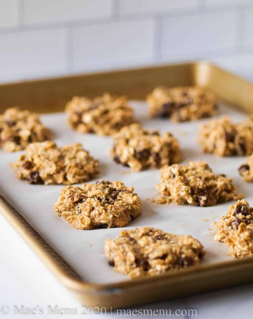 gluten free oat protein cookies