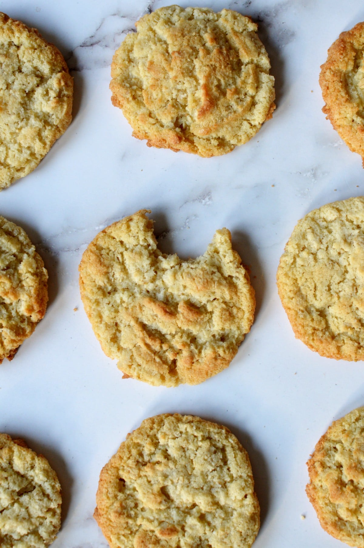 coconut flour cookies on the counter